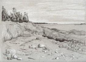 "Beach, Woodwards Cove 9"" x 12"""