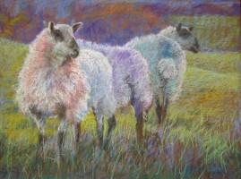 Trio by Aleda O'Connor