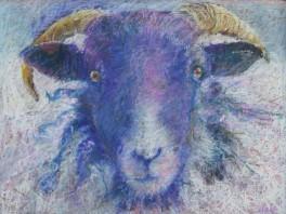 """Ram 18"""" x 24"""" by Aleda O'Connor"""