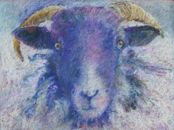 "Ram 18"" x 24"" by Aleda O'Connor"