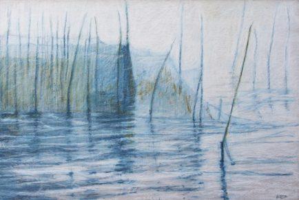 Weir Mouth by Aleda O'Connor