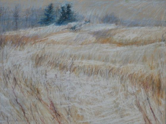 "Winter Field Pines 18"" x 24"""