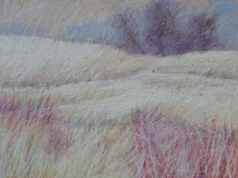 "Winter Field Willows 18"" x 24"""
