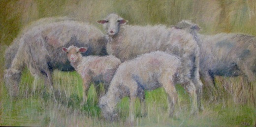 "Six Sheep Grazing 24 "" x 48"" SOLD"
