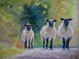 """Three Sheep Roadblock 36"""" x 48"""" SOLD"""