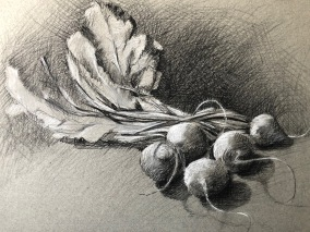 "Beets 11"" x 14"" Carbon and white charcoal pencil on toned paper"