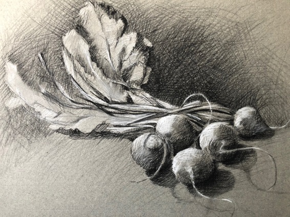 """Beets 11"""" x 14"""" Carbon and white charcoal pencil on toned paper"""
