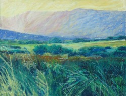 """Meadow 11"""" x 14"""" SOLD"""